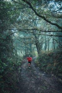bieganie, motywacja, trasa, trening, inspiracja, santiago de compostela