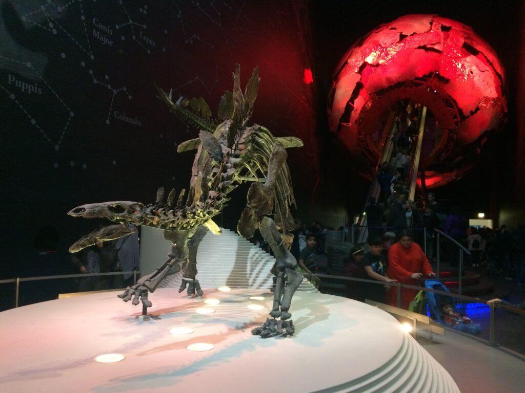 Londyn, weekend, zwiedzanie, miasto, stolica, Wielka Brytania, turysta, muzeum, dinozaur, szkielet, historia, obiekt