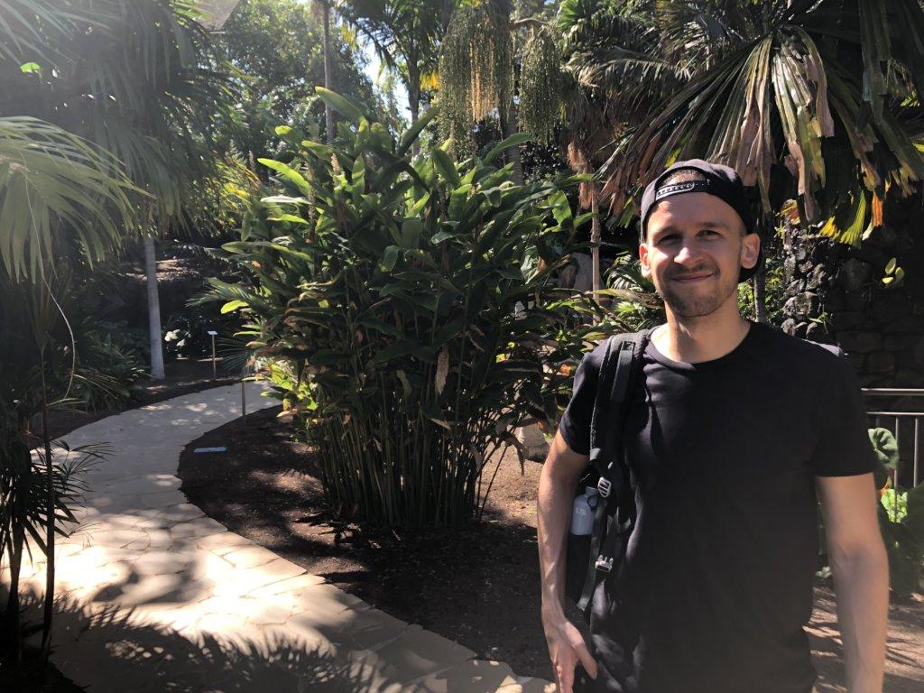 ogród botaniczny, chłopak, park, palmy, kanary, stolica