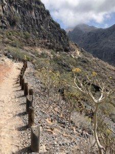 ścieżka, roślinność, pustynia, wąwóz, dolina, góry, kanary, widok